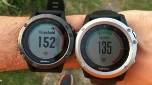 garmin fenix vs